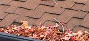 Your Guide to Winter Gutter Maintenance
