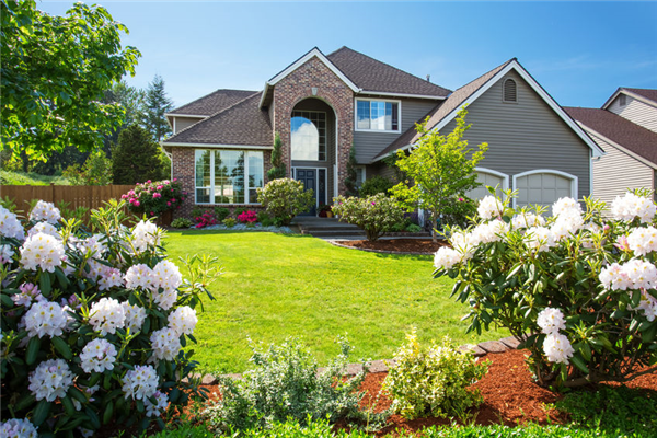 How Professional Contractors Can Increase Your Curb Appeal